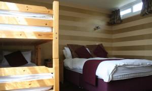 Bunk Suite